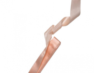 Matt Pointe Shoe Ribbon